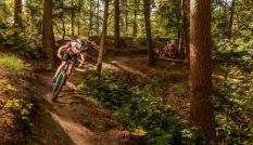 Mountainbikers in natuurgebied